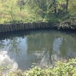 Padnall Lake 1